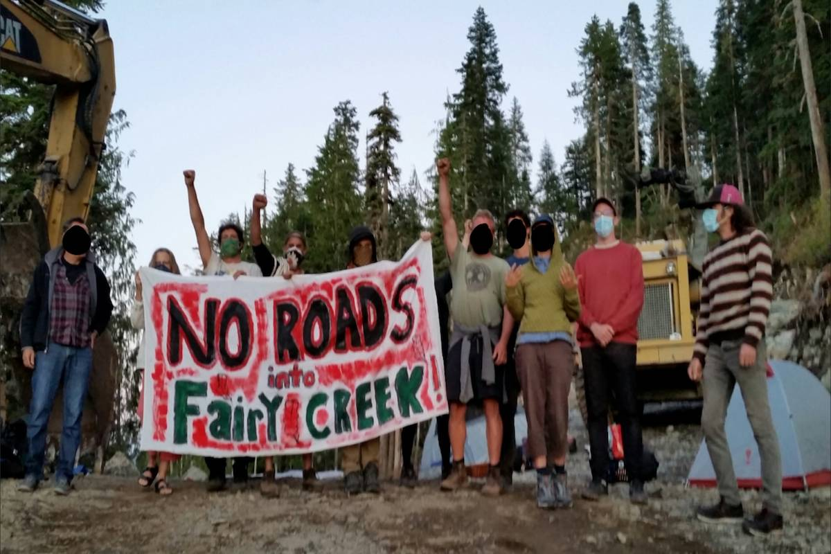 Battle of Fairy Creek: blockade launched to save Vancouver Island old-growth