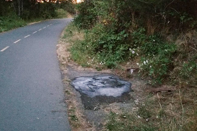 A 17-year-old boy has been charged with mischief after a fire was lit along the Galloping Goose Regional Trail in View Royal. (Courtesy West Shore RCMP)