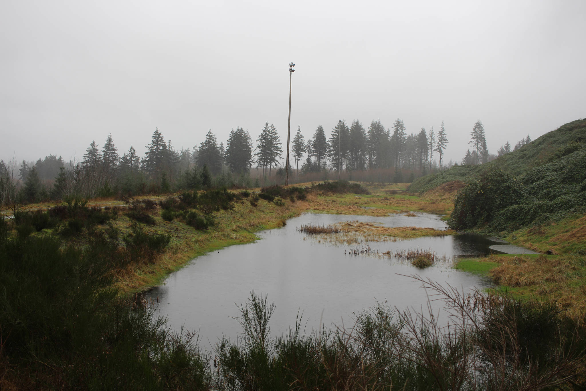 A pond collecting water runoff from the existing Discovery Park landfill. The water is piped to a treatment facility on site. Photo by Marc Kitteringham, Campbell River Mirror