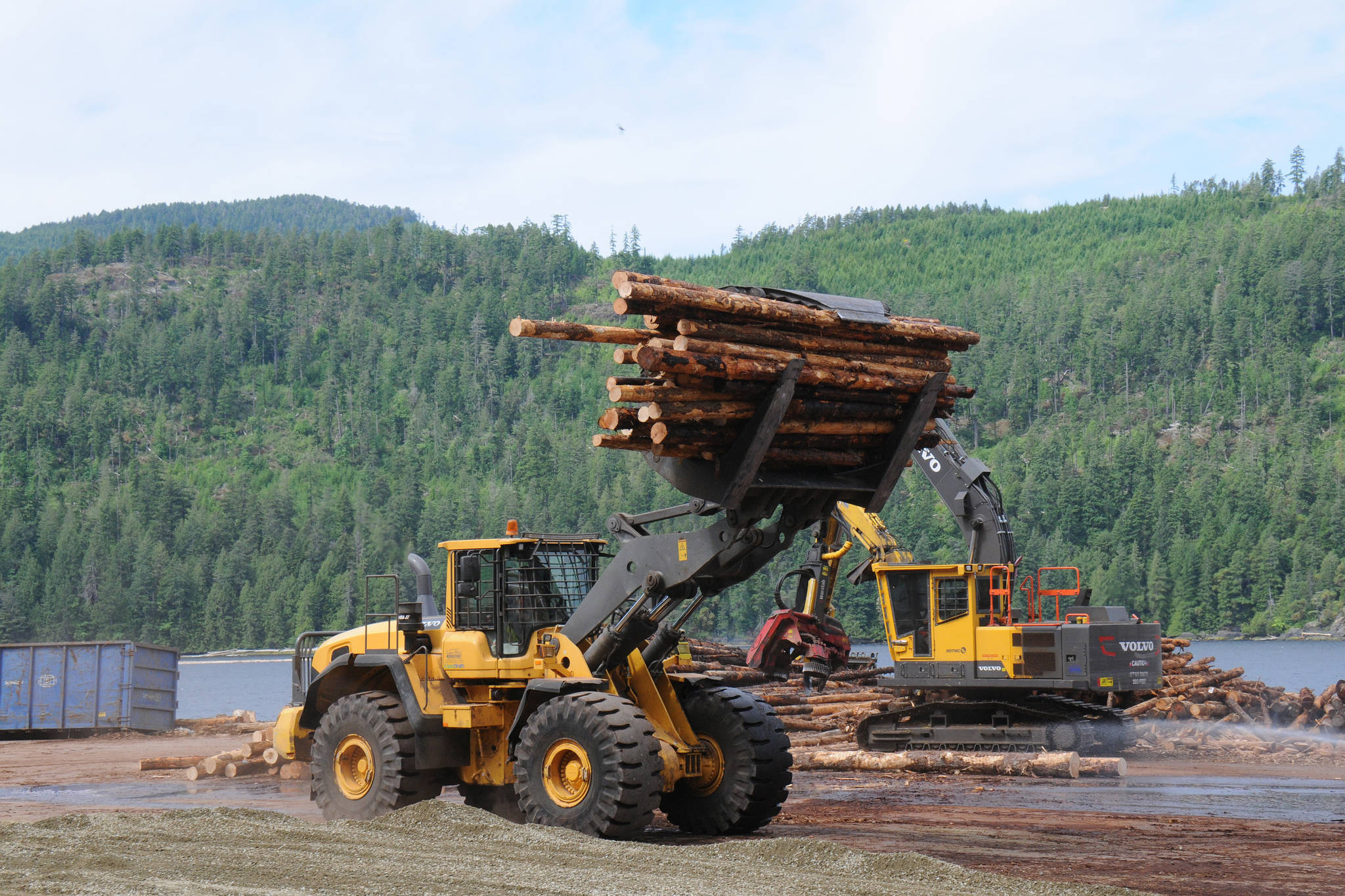 Crews at San Group's Coulson Sawmill site move a delivery of logs to be processed. (June 2, 2021) (SUSAN QUINN/ Alberni Valley News)
