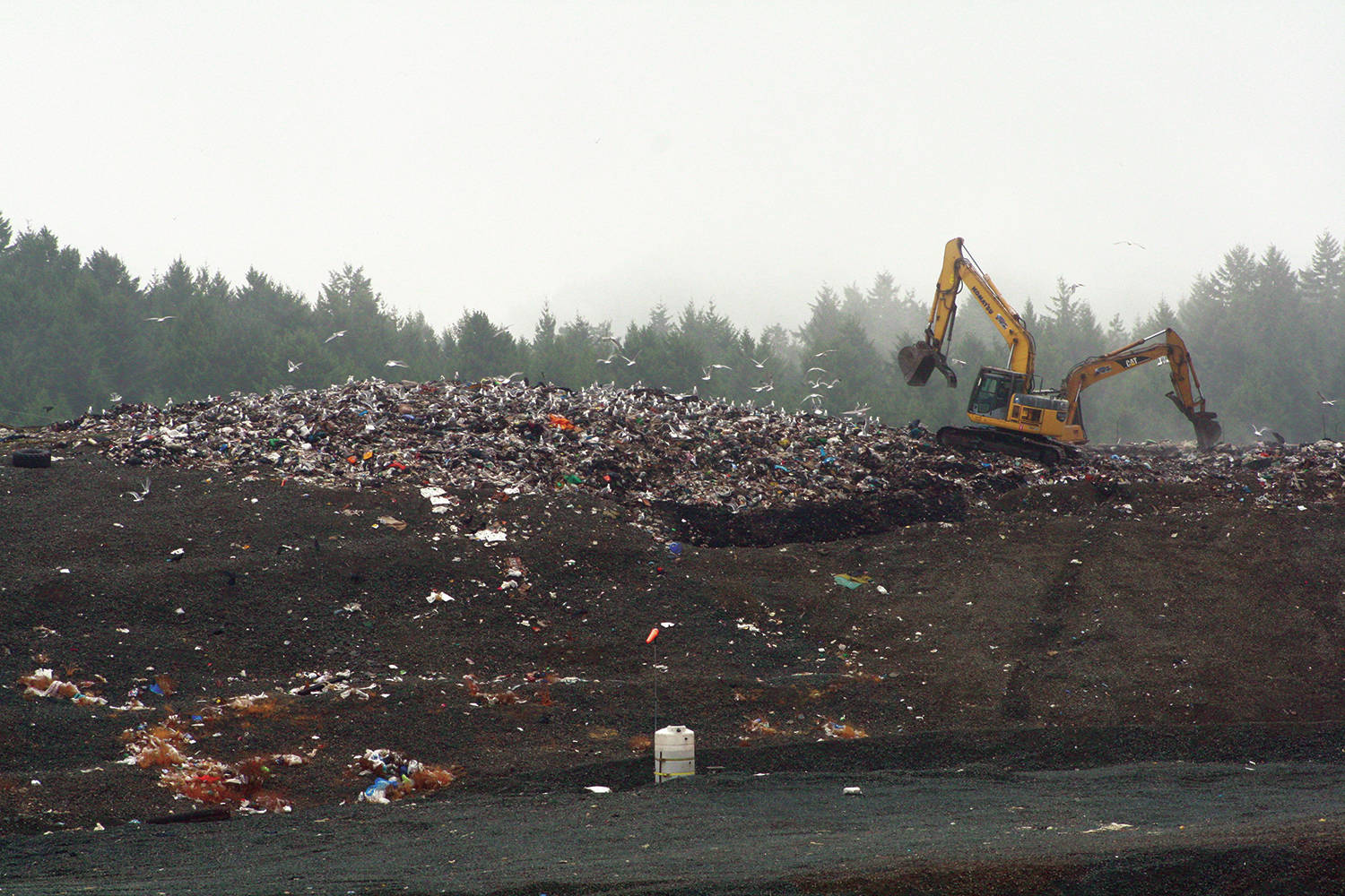 The Capital Regional District is expected to resume sending dried Class A biosolids, a byproduct of treated wastewater, to the mainland by the end of summer. (Black Press Media file photo)